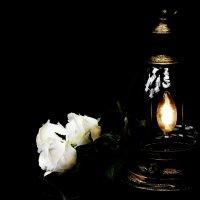 В неверном свете фонаря :: Wirkki Millson