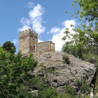 Башня Астагвера и церковь Двенадцати Апостолов. :: Elena Izotova