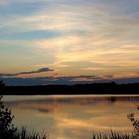 Летний вечер на озере.. :: Антонина Гугаева