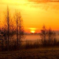 Утро весны :: Сергей
