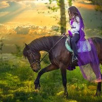 вечерняя прогулка на коне :: Елена ПаФОС