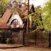 Архитектурные тонкости :: Ирина Шурлапова