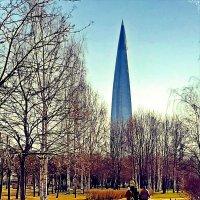 В парке 300 летия Спб. :: Виктор Егорович