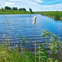 Гляжу в озера синие ... ) :: Елена Хайдукова  ( Elena Fly )