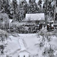 Деревенька моя деревянная дальняя... :: Сергей Дружаев