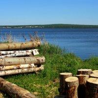 На траве дрова... :: Нэля Лысенко