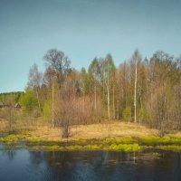 Пейзаж :: Александр Шишин