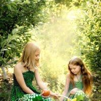 В саду :: Любовь Дашевская