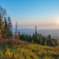 Осень, туманное утро :: Vladimbormotov