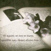 Живая поэзия :: Александр