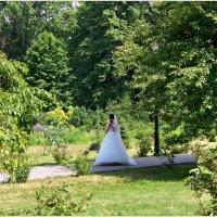 Невеста. Случайный снимок. :: Валерия Комова