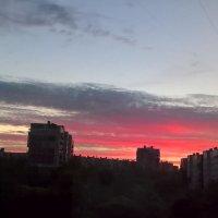 Белые ночи :: Митя Дмитрий Митя
