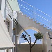 Лестницы Ии :: Ольга