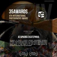 35awards 2018 :: Екатерина Агаркова