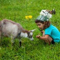 Это ребенок козленок? :: Kalex