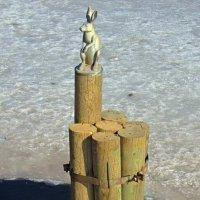 Памятник зайцу на Заячем острове :: Сергей Карачин