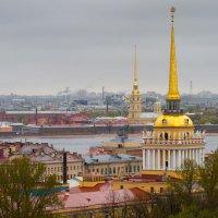 Вид на Питер. :: Владимир Лазарев