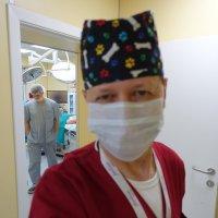 С днём медицинского работника, коллеги. :: Михаил Палей