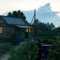 Летний теплый вечер :: Marina Pelymskaya