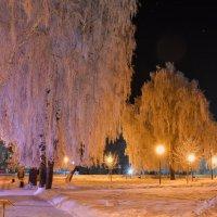 Зимний вечер. :: Андрей Чиченин
