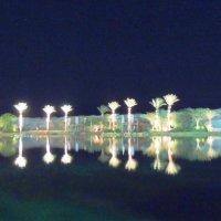 Озеро в парке  Тимна.Ночь :: Гала