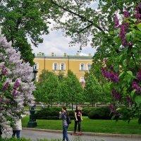 Московская весна-4 :: Елена Кирьянова