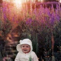 В лучах солнца... :: Зинаида Манушкина