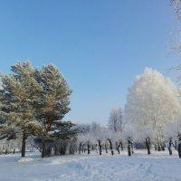 Лето - Зима :: Анна