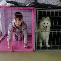 Детки в клетке... :: Тамара Бедай