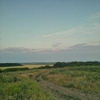 Природа Ростовской области :: Ольга Почепаева