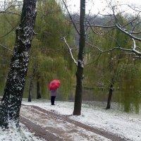 Прощание с осенью. :: Борис Бутцев