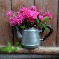Старый чайник в розовых мечтах... :: Люба
