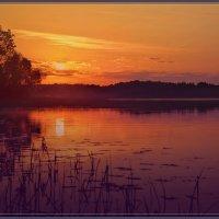 Утро на Озере :: Vadim WadimS67