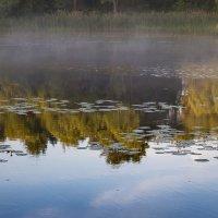 Остатки утреннего тумана :: Galina