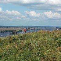 И луга , и река , и плывут облака... :: Galina Solovova