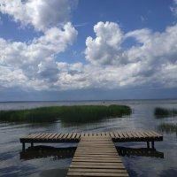 Плещеевское озеро :: Ольга