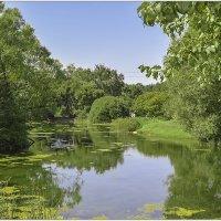 озеро в ботаническом саду :: Александр