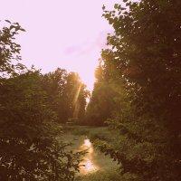 Отражение солнца :: marmorozov Морозова