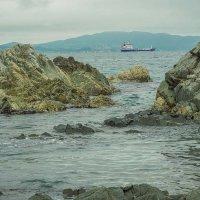 Где-то на берегу Японского моря... :: Арина
