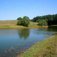 На речке, на речке...на том бережочке... :: Анна Суханова