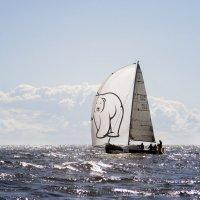 Солнечный ветер :: Тата Казакова