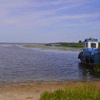 Куршский залив. Бухта Каширская :: Дмитрий Олегович
