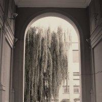 Минский дворик :: Елена Минина