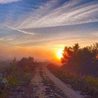 Солнце, утонувшее в тумане! :: Елена Хайдукова  ( Elena Fly )