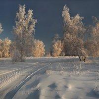 По белой дороге меж зимних берёз... :: Александр Попов