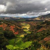 Мадагаскар... :: Александр Вивчарик