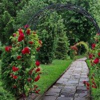 Добро пожаловать в лето... :: Любовь С.