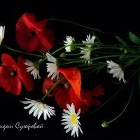 Вечная классика - белое, красное, черное :: Лидия Суюрова