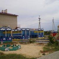 Вот моя деревня. :: Венера Чуйкова