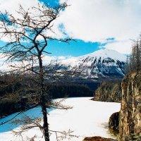 Наледь на ручье, притоке реки Ягдтали :: Сергей Курников